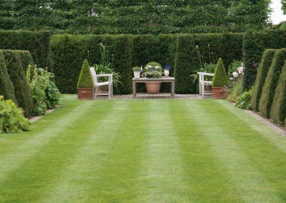 Green evelien - Hoe om te beseffen een tuin ...