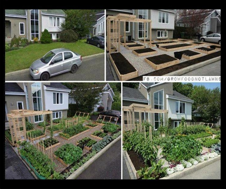 1Eco_11tuin_growfood