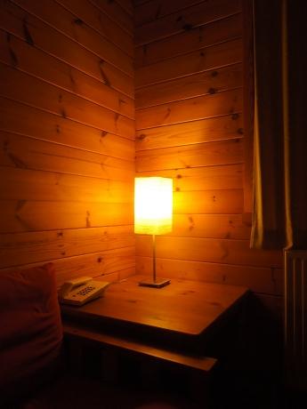 Lamp met 11Watt en lampenkap