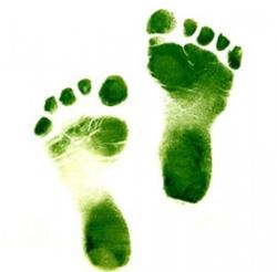 green-pregnancy