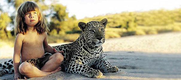 tippi-cheetah