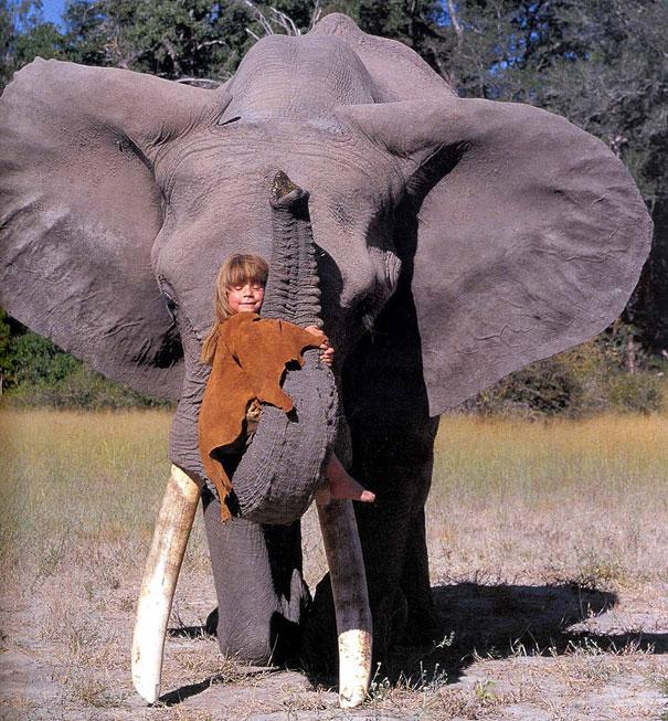 tippi-olifant